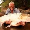 Сточные воды уничтожают сексуальную идентичность рыб
